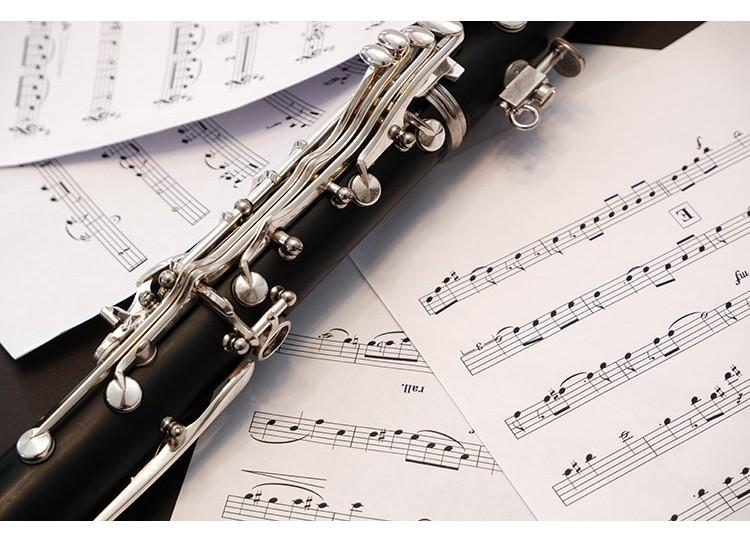 Partes que componen un oboe y su caña